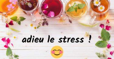 5 Tisanes Miracles Pour Dire Adieu au Stress Et à l'Anxiété