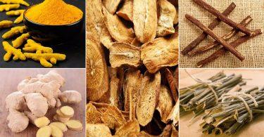 10 herbes ecaces qui peuvent aider à traiter les symptômes de l'arthrite