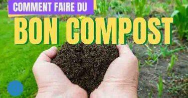 Comment Faire du Bon Compost ? Le Guide Facile Pour Débutants