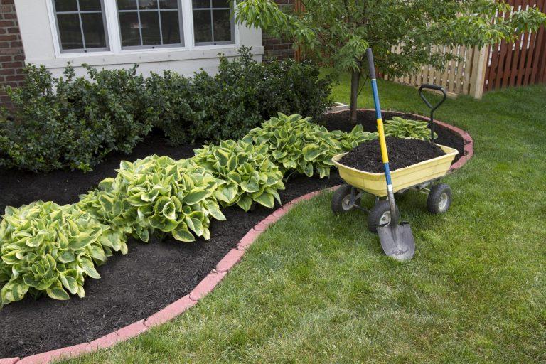 Ces jardiniers professionnels vous présentent 8 désherbants qui tueront vos mauvaises herbes, mais pas vos fleurs!