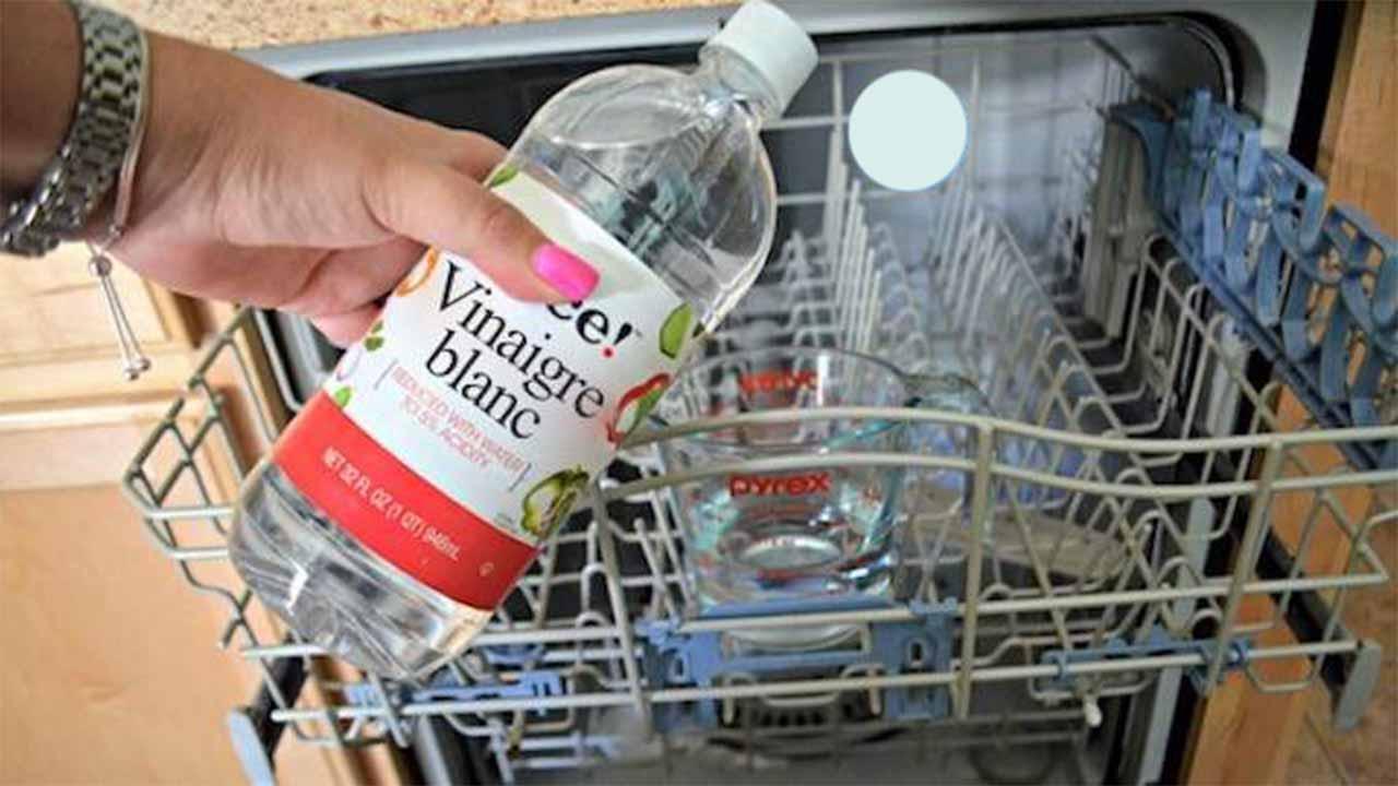 3 Étapes Simples Pour Nettoyer Votre Lave-Vaisselle en Profondeur